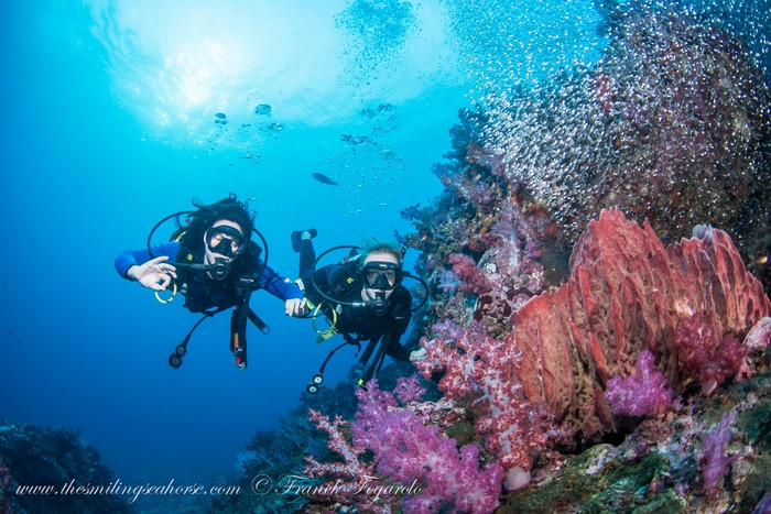 two divers holding hands in front of the fishy coral reef