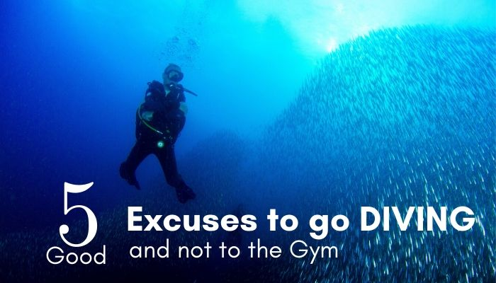 5 good excuses to go diving and not to the gym