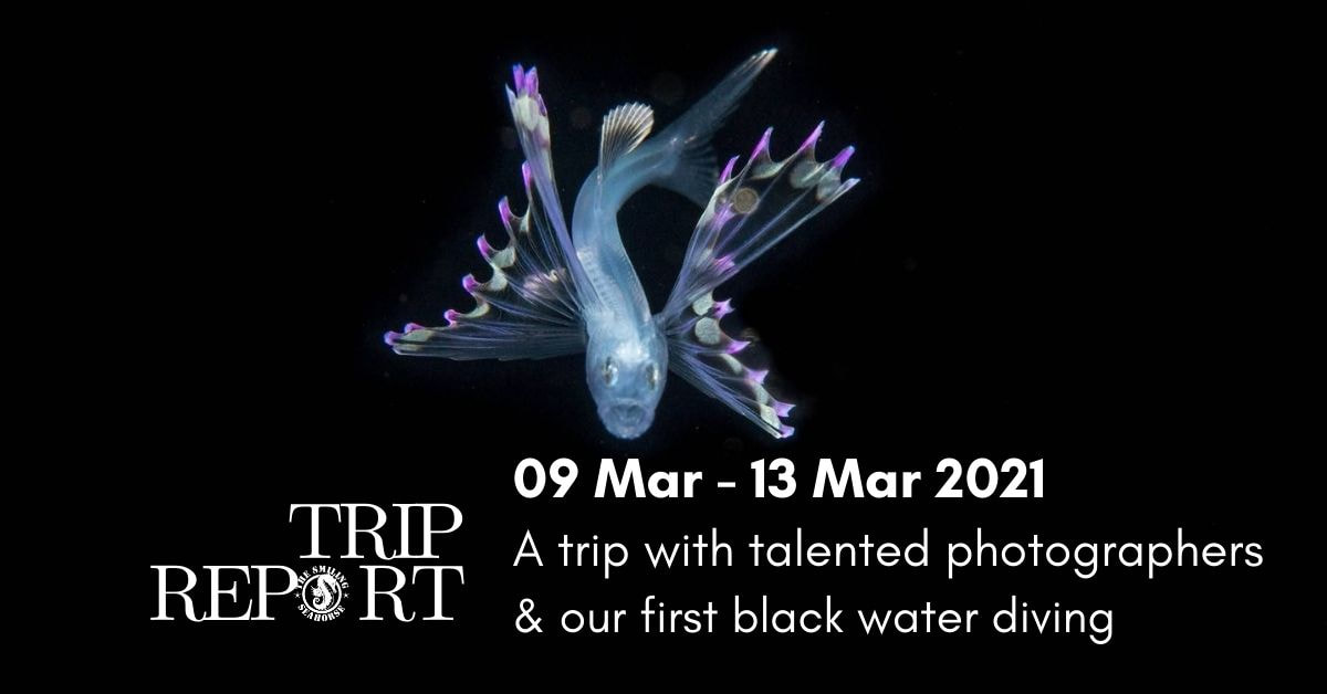 The 9th to 13th March Thailand cruise... A special UW photographers!