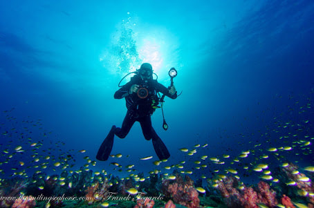 diver photography underwater coral reef amazing paradize best place diving thailand andaman burma mergui archipelago